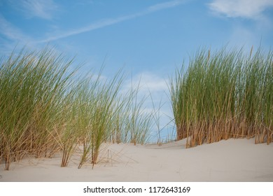 Details of empty beach with dunes waves.