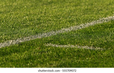 Details of green soccer (football) field