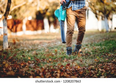 Details of leaves blowing, man using multiple tools while working in garden