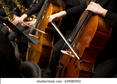 Details of a music orchestra