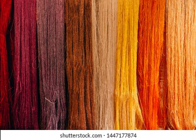 Details of natural colourful silk thread fiber with natural colour dye process. Traditional sericulture Thai silk making in Countryside