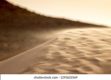 Details of the sand dunes in the Sahara Desert
