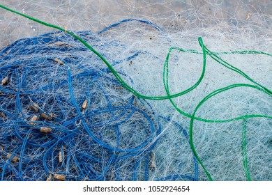 Details trawl used for crabs and fish and rope color.