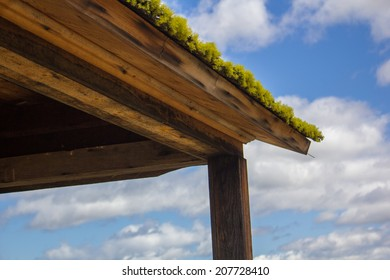Details of a weathered roof covered in moss against a cloudy sky