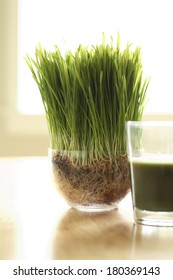 Detox Beverage with grass and bright background