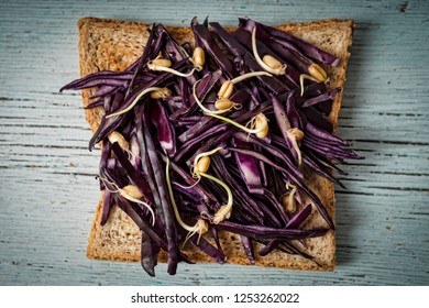 Detox. Tost with red cabbage and wheat sprouts. Super food. Healthy breakfast, diet.