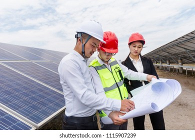 A developer and engineer visited the PV energy industrial park.