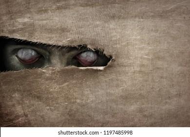Devil eyes peeking