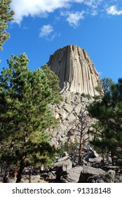 Devil's tower framed by trees in wyoming