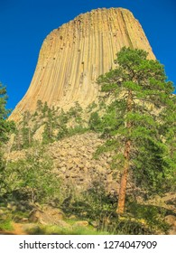 Devils Tower National Monument also known as Bear Lodge Butte, in Bear Lodge, part of the Black Hills, Wyoming, United States. The summit is 1,559 meters. Vertical shot.