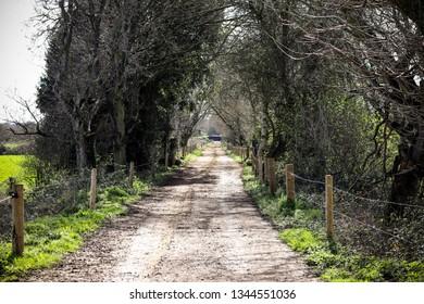 Devon country road