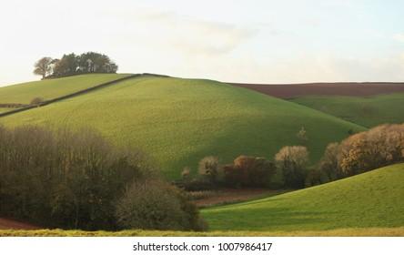 Devon landscape - autumn