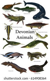Devonian Animals 3d illustration - A collection of various animals and fish that lived in the Devonian Period of Earth's history.