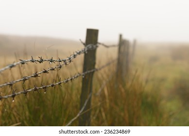 Dew drops on a barb wire fence in the Yorkshire English countryside on a foggy day.