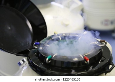 An  dewar with liquid nitrogen straws with frozenn embryos and egg cells  in a cryobank in infertility treatment clinic - Shutterstock ID 1225485136