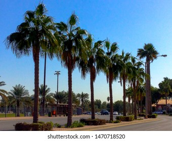 Aramco Images, Stock Photos & Vectors | Shutterstock
