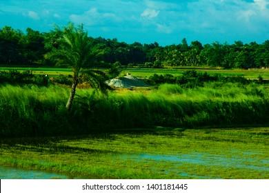 DHAKA, BANGLADESH - AUG 08, 2018: BLUE EYES KIDS IN BANGLADESH  Dhaka / Bangladesh - 2018: The Most Beautiful Natural landscape of Bangladesh