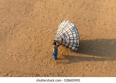 Dhaka, Bangladesh - December 3, 2016: workers are in the paddy field at Dhaka, Bangladesh