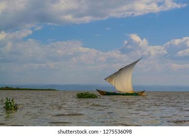 dhow boat on lake Victoria near hyacinth