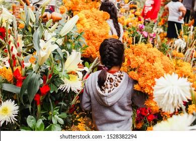 Dia de los Muertos Mexico, cempasuchil flowers for day of the dead, Mexico cemetery