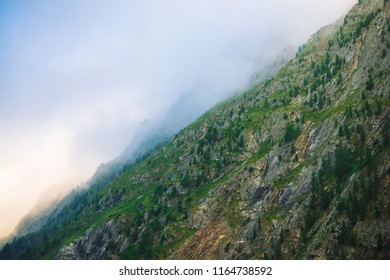 Diagonal mountainside with forest in morning fog close up. Giant mountain in haze. Early sun is shining through mist. Overcast weather above rocks. Atmospheric mountain landscape of majestic nature.