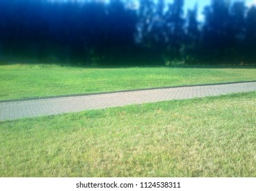 Diagonal park path summer green lawn background