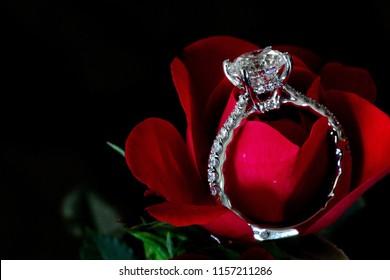 Diamond Engagement Ring On Red Rose (Platinum Pave)