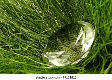 diamond in the green grass