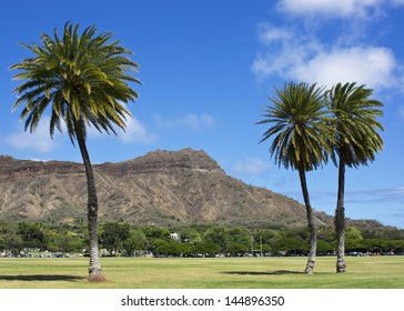 diamond head with unique palm trees in front, from kapiolani park