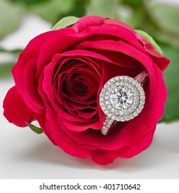 Diamond ring with double halo setting lying within a red rose.