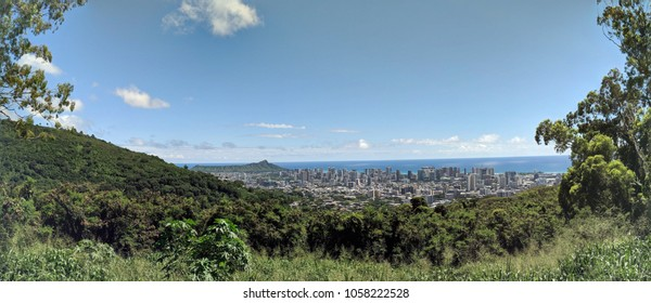 Diamondhead and the city of Honolulu on Oahu on a nice day from high in the mountains with tall trees in the foreground.