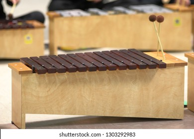 Diatonic Xylophone used by students in school to learn about music and the art.