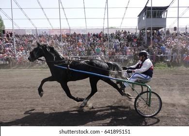 Horse Chariot Images, Stock Photos & Vectors | Shutterstock