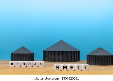 """Dice form the words """"BIOGAS"""" and """"SMELL"""" in front of a model of a biogas plant."""