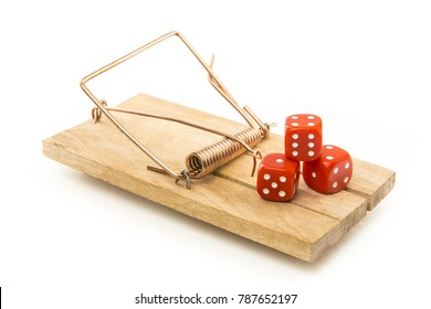 Dice to play posed on a mousetrap. Concept of gambling addiction. Isolated on white background. With copy space text. Studio Shot.