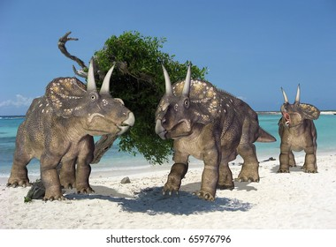 the diceratops gang on the beach