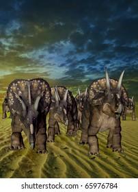 the diceratops gang on the desert