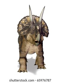 the diceratops white background