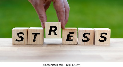"""Dices form the word """"STRESS"""""""