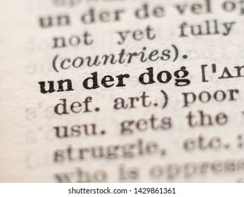 Dictionary definition of word underdog, selective focus.