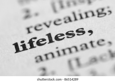 Dictionary Series - Lifeless