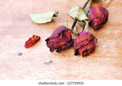 Died rose on wood background