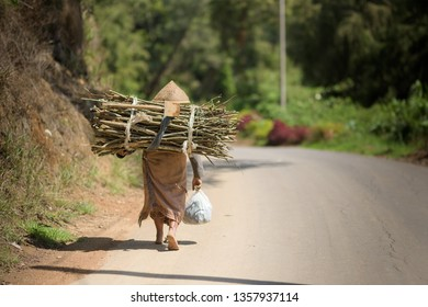 DIENG, INDONESIA - 15 Nov 2018: A working woman in traditional Javanese clothes is seen from behind walking along a village road, carrying firewood on her back.