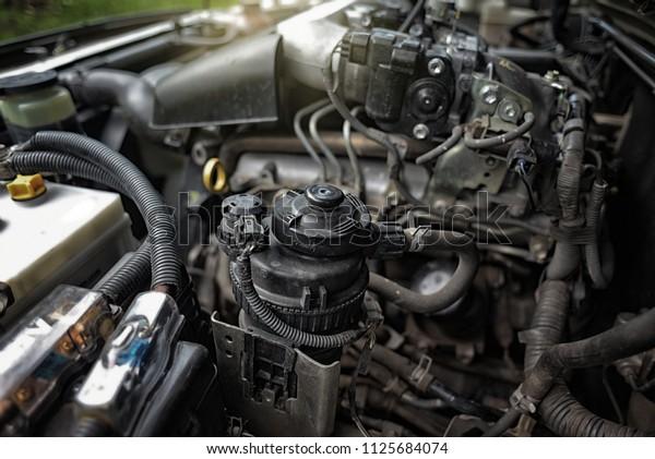 Diesel Fuel Filter Water Separator Diesel Stock Photo (Edit Now