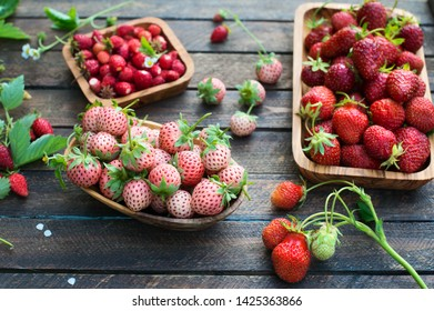 Diferent kinds of strawberry on wooden plates. Pineberry or Hula Berry with a pineapple flavor, wild strawberry, and garden strawberries.
