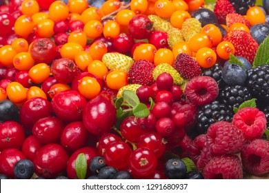 different berries background