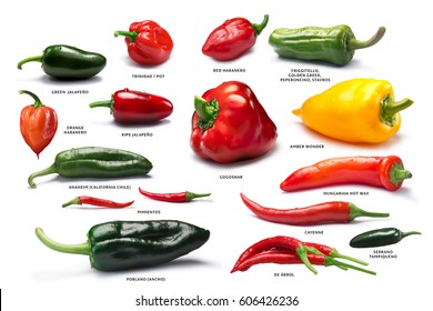 Different Capsicum (peppers) fruits. Clipping path for each pepper, shadows separated. Paths: https://goo.gl/okZ533