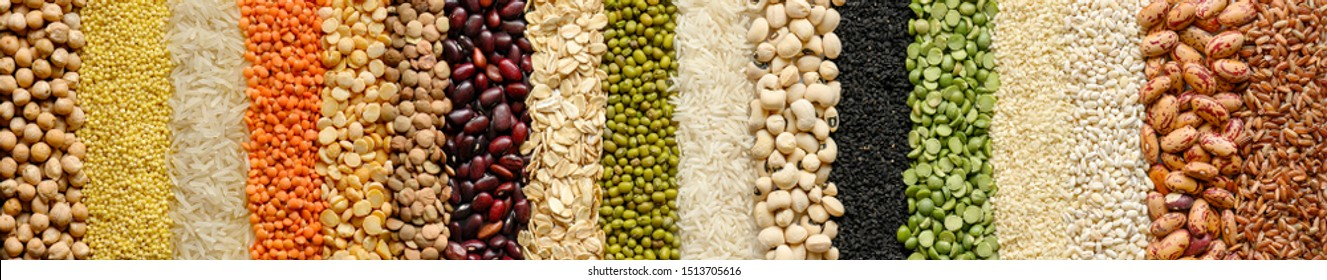 Different cereals and legumes: rice,peas, lentils, beans haricot millet buckwheat chickpea. Top view. Website header banner
