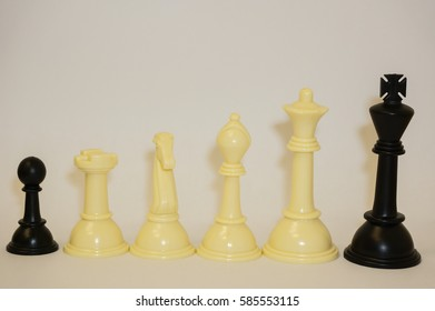 Different chess pieces displayed on a white background