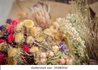 Different colorful kinds of dry flowers on blurred background, Copy space, selective focus